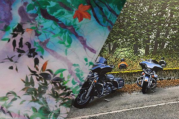 A decorative silk cloth divides an image in halves. The other half of the image depicts a detailed and true to lifepainting of two motorcycles parked at the side of the road in a wooded area