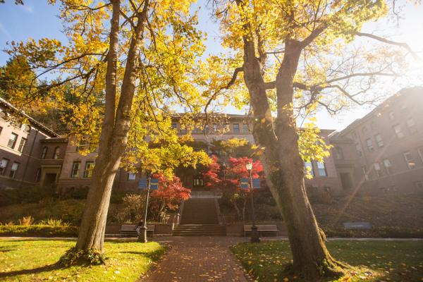 Steps up to Old Main. The sky is clear and the sun shines through the bright fall foliage.