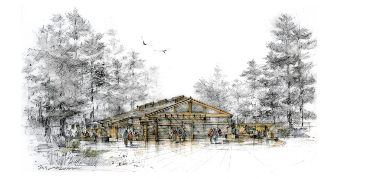 A drawing of what a Coast Salish style Longhouse looks like, a large wooden building surrounded by large trees